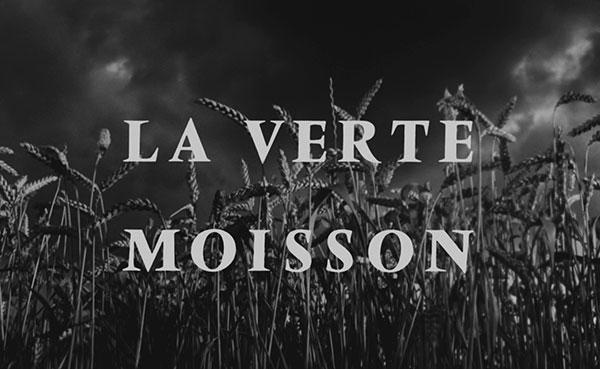 verte-moisson-1
